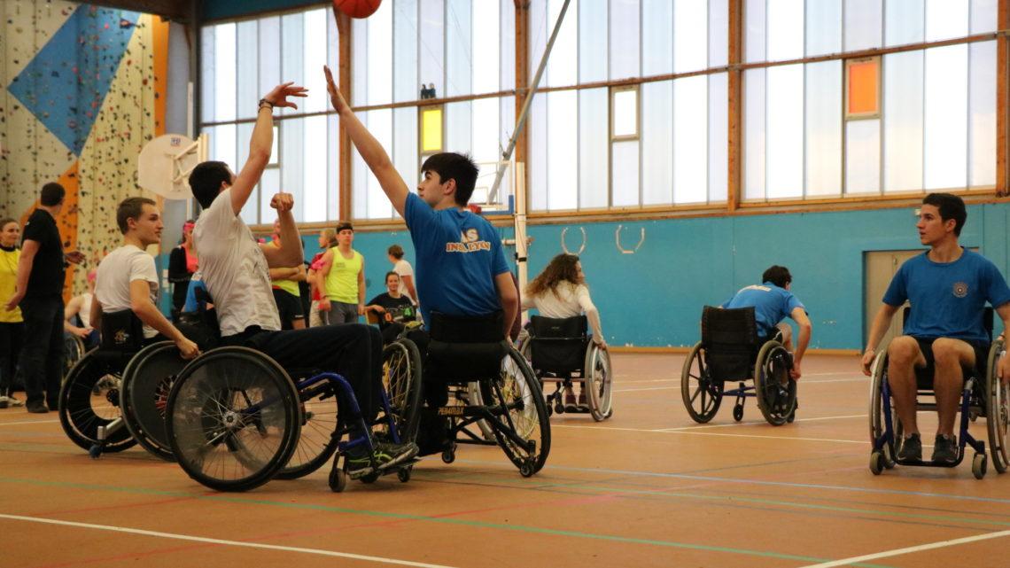 Basket fauteuil